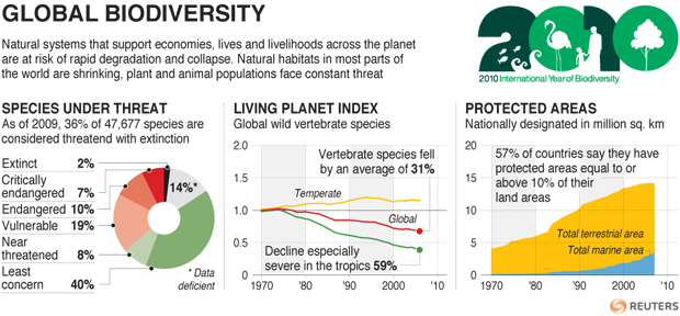 global_biodiversity_infographic